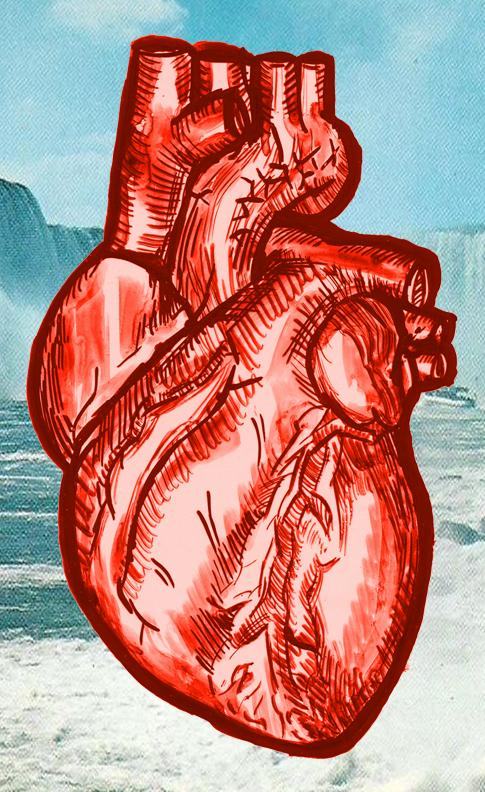 johanna goodman heart