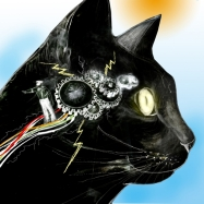 Illustration by Heather Scholl http://altpick.com/heatherscholl